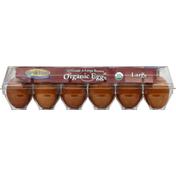 Dutch Farms Eggs, Organic, Brown, Large