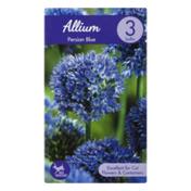 Garden State Bulb Company Allium Persian Blue