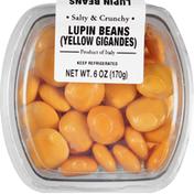 International Gourmet Lupin Beans, Yellow Gigandes