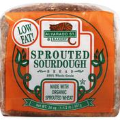 Alvarado Street Bakery Bread, Sprouted Sourdough