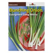 Burpee Seeds, Organic, Onion, Evergreen Long White
