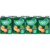 Earth Wise Aseptic Entirely Natural Orange 100% Juice