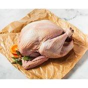 14 Pound & Under Frozen Organic Turkey