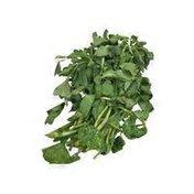 Watercress Herbs