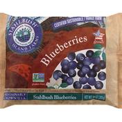 Stahlbush Island Farms Blueberries