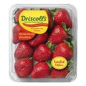 Driscoll's 14oz. Special Pick Strawberries