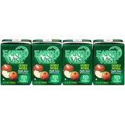 Earth Wise Aseptic Entirely Natural Apple Fruit Juice