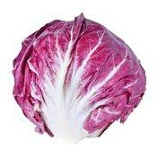 Organic Radicchio Lettuce