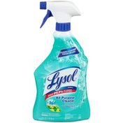 Lysol Complete Clean Fresh Mountain Scent All Purpose Cleaner