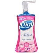 Dial Complete Antibacterial Foaming Hand Wash, Silk & Magnolia