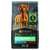 Purina Pro Plan High Protein Large Breed Puppy Food With Probiotics, Beef & Rice Formula