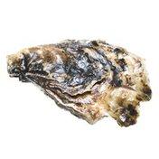Hama Hama Small Oysters
