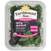 Earthbound Farm Organic Spicy Spinach