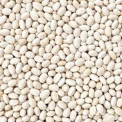 ISP Navy Beans