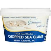 Galilean Seafoods Chopped Sea Clams