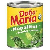 Dona Maria Tender Cactus Nopalitos