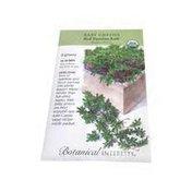 Botanical Interests Organic Baby Greens Red Winter Kale