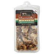 Monterey Mushrooms, Dried, Chanterelle