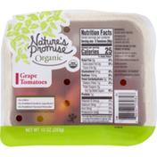 Nature's Promise Grape Tomatoes, Organic, Carton