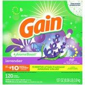 Gain Laundry Detergent Powder, Lavender