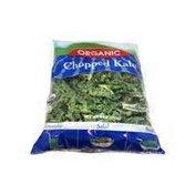 SF Chopped Organic Kale Salad