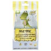 Natural Essentials Noz-Eez, Mellow Melon, Nose Wipes, Ages 3 Mo+