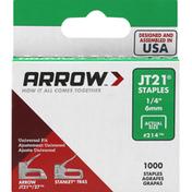 Arrow Staples, JT21, 1/4 Inch