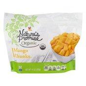 Nature's Promise Organic Mango Chunks