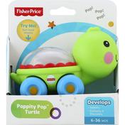 Fisher-Price Turtle, Poppity Pop, 6-36 Months