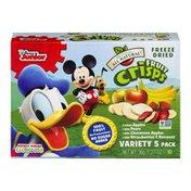 Brothers-All-Natural Brothers All Natural Disney Junior Freeze Dried Fruit Crisps Variety Pack - 5 PK