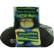Avocados, Hass