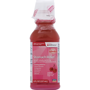 Family Wellness Stomach Relief, 525 mg, Cherry
