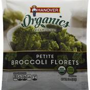 Hanover Broccoli Florets, Petite