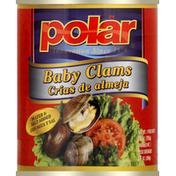 Polar Baby Clams
