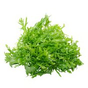 Organic Frisee (Chickory) Lettuce