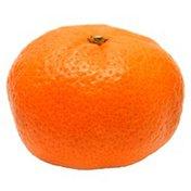 Kishu Mandarin Bag