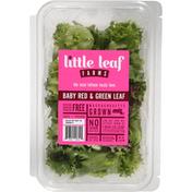 Little Leaf Farms Lettuce, Baby Red & Green Leaf