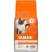 IAMS Healthy Adult Original with Ocean Fish & Rice Cat Food