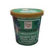 Frozen Fruit Mint Chocolate Sorbet Ice Cream