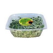 The Natural Trading Company Organic Sunflower Greens