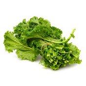 Mustard Greens (Gai Choy) Bunch