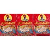 Sun-Maid Yogurt Flavored Raisins, Caramel Sea Salt, 6 Pack