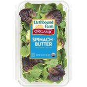 Earthbound Farm Organic Half & Half Baby Spinach Baby Butter Lettuce