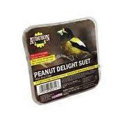 Audubon Park Peanut Delight Suet