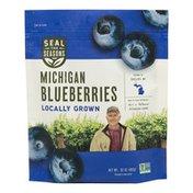 Seal the Seasons Michigan Blueberries