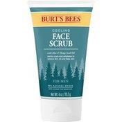 Burt's Bees Facial Cleanser