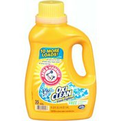 Arm & Hammer Plus OxiClean Stain Fighters Free of Perfumes & Dyes Liquid Laundry Detergent