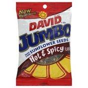 DAVID Seeds Sunflower Seeds, Roasted & Salted, Jumbo, Hot & Spicy Flavor