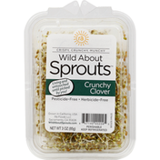 Wild About Sprouts Sprouts, Crunchy Clover