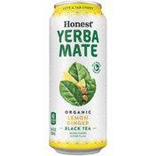 Honest Tea Yerba Mate Lemon Ginger Can